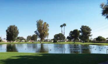 a photo of a lake and trees view in 0.40 acres land in ramon road and monterey avenue in thousand palms california